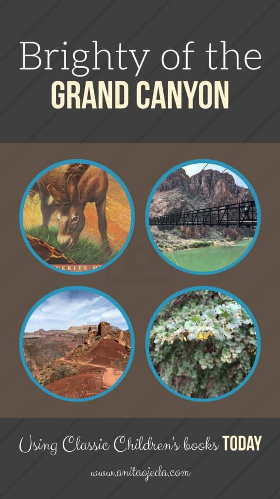 Brighty of the Grand Canyon: A classic children's book with discussion questions and resources for today's reader. #homeschool #amreading #teacher