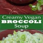 creamy-vegan-broccoli-soup