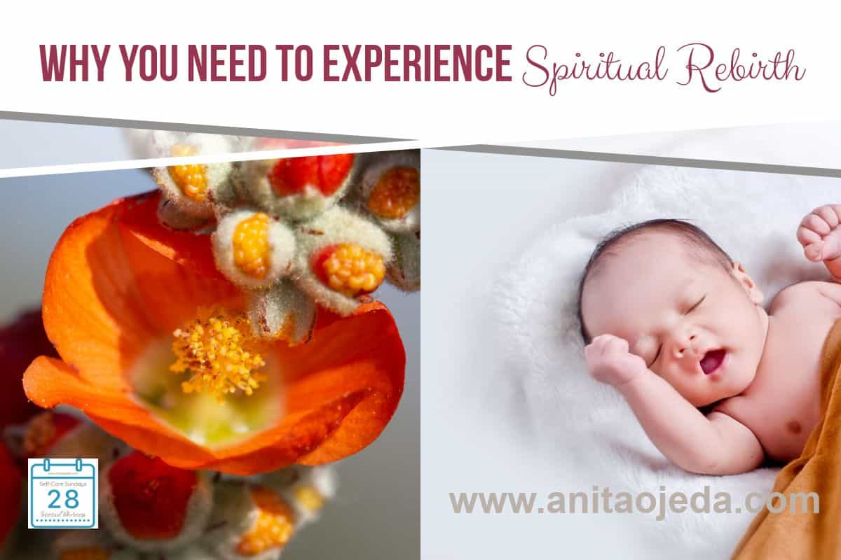 Feeling worn out and in a rut? No matter what your age, perhaps what ails you is a need for spiritual rebirth. Discover an excellent guide. #bookreview #amreading #selfcare