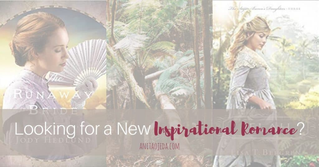 Looking for your next TBR inspirational romance? Check out these two new releases from master storytellers! Faith meets fiction and relatable situations. #amreading #netgalley #BethanyHouse #BookRelease