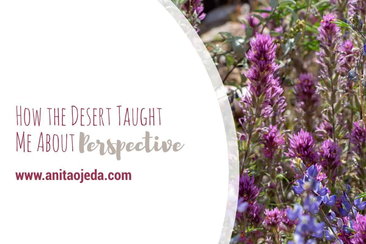 Perspective. It's easy to lose it during troubled times. A drive through the desert restored my perspective. Maybe it will help you, too. #fmfparty #desert #flowers #perspective #Arizona #spring #selfcare #innerbeauty #strength